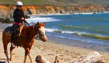Horseback riding on Molera State Beach in Big Sur is quite a treat. Your young ones will love it!
