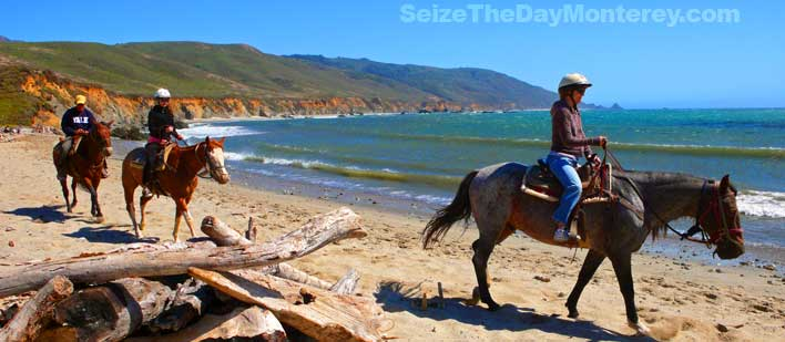 Horseback Riding Tours on Andrew Molera Beach in Big Sur California is Great Fun!