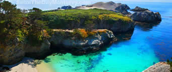 Point Lobos is a great place to check out while camping in Big Sur.  There is no camping there though.