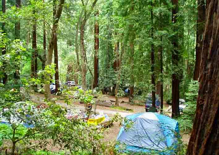 Big Sur camping amongst the Redwood Trees and near the Big Sur River is just heaven!