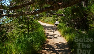 Big Sur Hiking Trails are some of the best in California