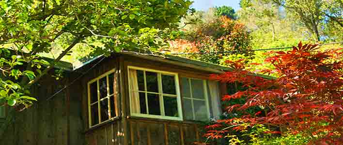 Big Sur Lodging for Under $100 in California is quaint and cozy!