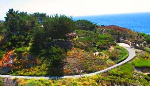 Why stay at a hotel when you can rent a house in Big Sur!  Check out www.VRBO.com