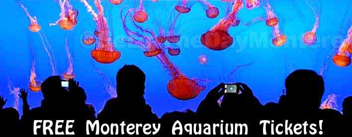 Free Monterey Bay Aquarium Tickets can be scored!