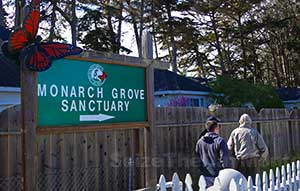 Entrance to the Monarch Sanctuary in Pacific Grove