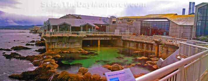 Monterey Aquarium Deck offers great views of the Bay!