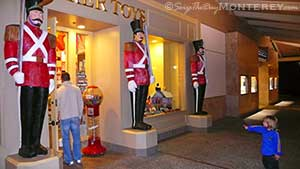 Thinker Toys Toy Store is not your run of the mill Toy Store!