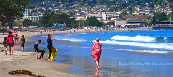 Monterey State Beach is a popular place to build sand castles, boogie board, walk the dog, and so much more!