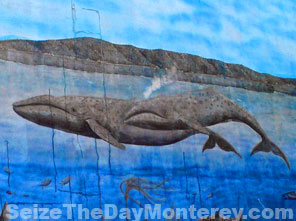 Famous Grey Whale Mural on Cannery Row.
