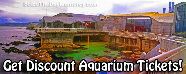 Monterey Bay Aquarium Discount Tickets can be had.  Be sure to enjoy the Bay View from the Aquarium's Deck!